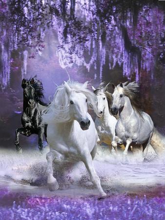 https://imgc.artprintimages.com/img/print/horses_u-l-q10pfxq0.jpg?p=0