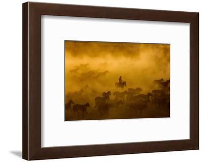 horses-Ümmü Nisan-Framed Photographic Print
