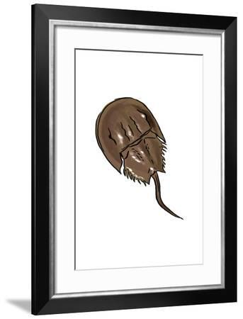 Horseshoe Crab - Icon-Lantern Press-Framed Art Print