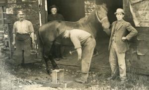 Horseshoeing at the Blacksmith