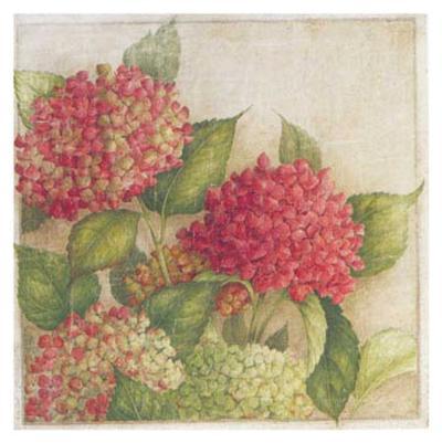 Hortensia II-Vincent Jeannerot-Art Print