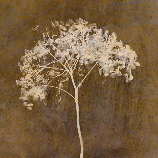 Hortensia Silhouette Bronze-Cora Niele-Photographic Print