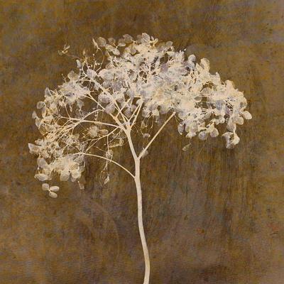 https://imgc.artprintimages.com/img/print/hortensia-silhouette-bronze_u-l-q1a6o0e0.jpg?p=0