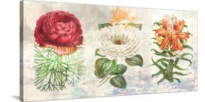 Hortus Botanicus 2.0-Eric Chestier-Stretched Canvas Print