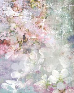 Cherry Flowers by Hoskari