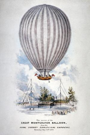 Hot Air Balloon Ascending over Surrey Zoological Gardens, Southwark, London, 1838 by H Harrison