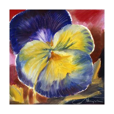 Hot Blooms VI--Premium Giclee Print