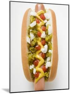 Hot Dog with Relish, Mustard, Ketchup and Onions