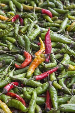 https://imgc.artprintimages.com/img/print/hot-peppers-of-various-color-used-as-food-in-indian-cuisine_u-l-pwg1i10.jpg?p=0