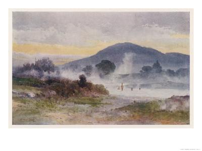 Hot Pools Near Ngongotaha Mountain-F. Wright-Giclee Print