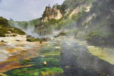 Hot Springs, Waimangu Volcanic Valley, Rotorua, Bay of Plenty, North Island, New Zealand-Rainer Mirau-Photographic Print
