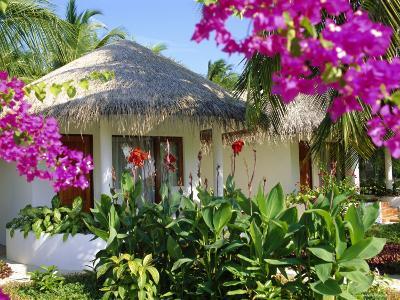 Hotel Accommodation, Baros, Maldive Islands, Indian Ocean-Robert Harding-Photographic Print