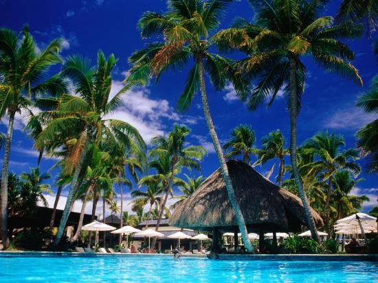 Hotel Pool and Palm Trees, Fiji-Peter Hendrie-Premium Photographic Print