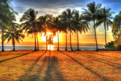 Sunlight Rising behind Palm Trees in HDR Picture of Port Douglas by hotshotsworldwide