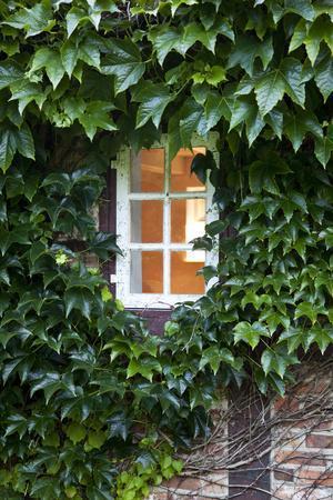 https://imgc.artprintimages.com/img/print/house-detail-window-covered_u-l-q11vc820.jpg?p=0