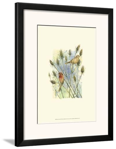 House Finches-Janet Mandel-Framed Art Print