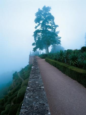 https://imgc.artprintimages.com/img/print/house-garden-december-2002_u-l-pep6490.jpg?p=0