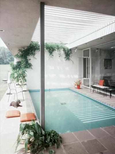 House & Garden - July 1955-Andr? Kert?sz-Premium Photographic Print