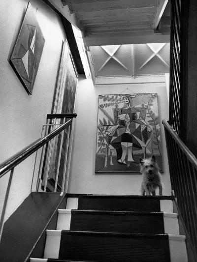 House & Garden - June 1946-Andr? Kert?sz-Premium Photographic Print