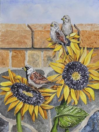 https://imgc.artprintimages.com/img/print/house-sparows-with-sunflowers_u-l-q12tuzg0.jpg?p=0