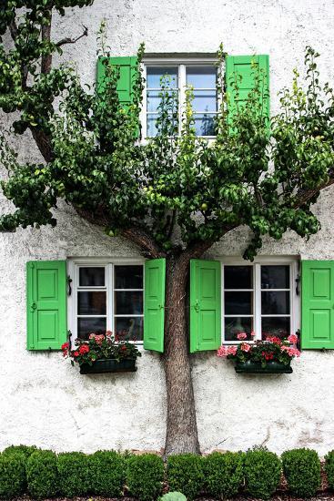 House, View, Tree-Jule Leibnitz-Photographic Print