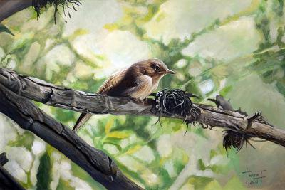 House Wren, the Harmonious Singing, 2010-Cruz Jurado Traverso-Giclee Print