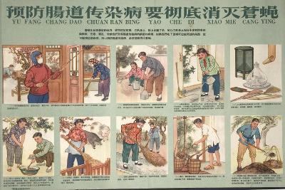 Housekeeping and Eliminating Flies--Art Print