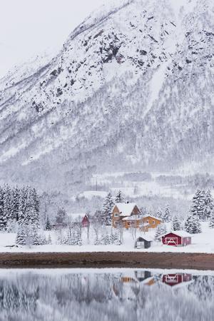 Houses in Fiskefjorden, Hinnoya (Island), Vesteralen, 'Nordland' (County), Norway-Rainer Mirau-Photographic Print