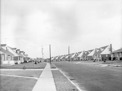 Houses in Levittown, Long Island--Photographic Print
