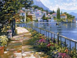 Sunlit Stroll by Howard Behrens