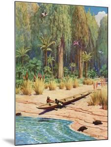 Illustration for Robinson Crusoe by Howard Davie