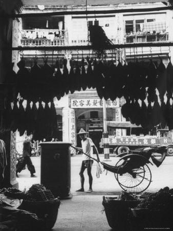 Young Man Standing in Front of a Herbs and Fish Market Displaying Racks of Fish