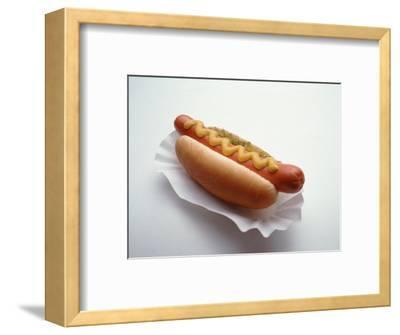 Hot Dog in Bun with Mustard