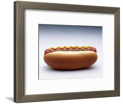 Hot Dog with Mustard and Relish