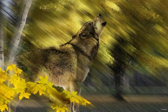 Howling Wolf-Gordon Semmens-Photographic Print