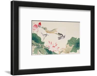 Birds by Lotus Pond