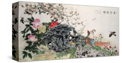 Birds, Peacock and Flowers in Spring