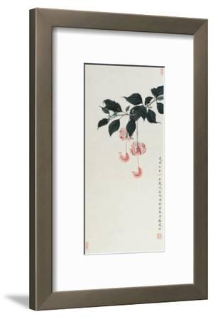 Chinese Hibiscuses