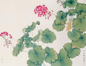 Geranium by Hsi-Tsun Chang