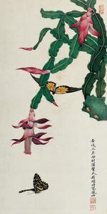 Holiday Cactus by Hsi-Tsun Chang