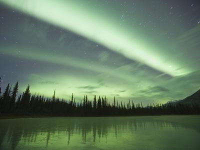 Aurora Borealis, Alaska, USA by Hugh Rose