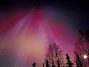 Curtains of Colorful Northern Lights Above Fairbanks, Alaska, USA by Hugh Rose