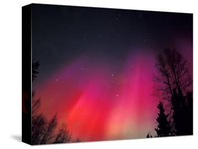 Curtains of Northern Lights above Fairbanks, Alaska, USA