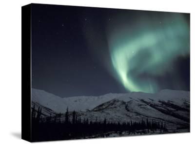 Northern Lights Curtain of Green and Yellow, Brooks Range, Alaska, USA