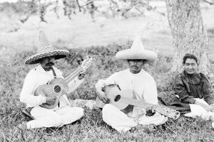 Mexican musicians playing guitars, c.1920 by Hugo Brehme