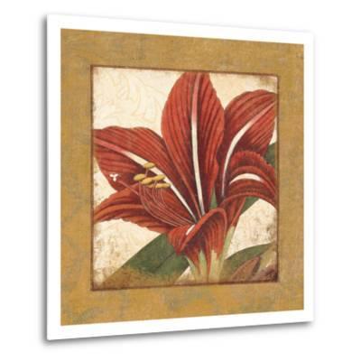 Amaryllis Bloom