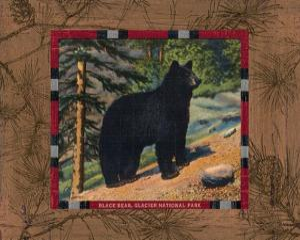 Black Bear I by Hugo Wild
