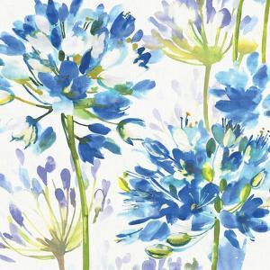 Blue Medley III by Hugo Wild