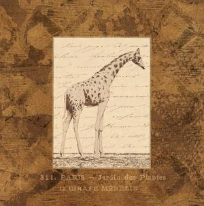 Giraffe by Hugo Wild