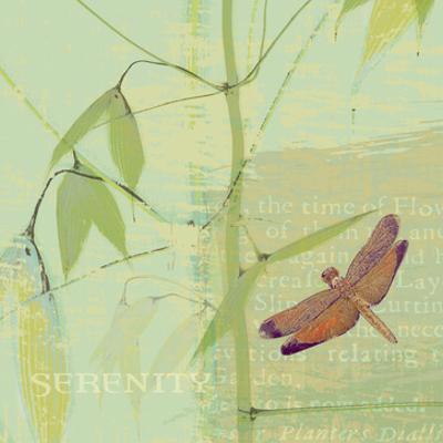Serenity by Hugo Wild